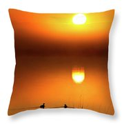 Sunset Marshes Throw Pillow