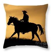 Sunset Meadow. Throw Pillow