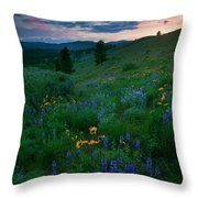 Sunset Meadow Trail Throw Pillow
