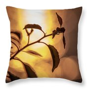 Sunset Of An Ant Throw Pillow