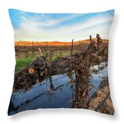 Sunset On The Vine Throw Pillow