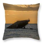 Sunset On The Wreck Of The Concrete Ship Atlantus Throw Pillow