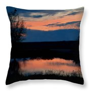 Sunset On Willow Pond Throw Pillow