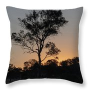 Sunset - Out In The Country Throw Pillow