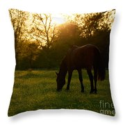 Sunset Over A Spring Meadow Throw Pillow