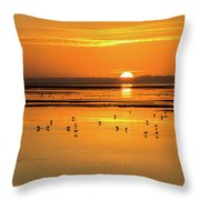 Sunset Over Arcata Marsh, With Avocets Throw Pillow