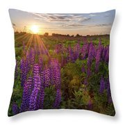 Sunset Over Meadow Of Lupine Throw Pillow
