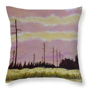 Sunset Over Powerlines Throw Pillow