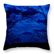 sunset over Suwanee 2009 Throw Pillow