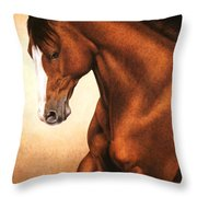 Sunset Throw Pillow by Pat Erickson