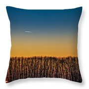 Sunset Plane Throw Pillow