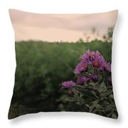 Sunset Purple  Throw Pillow