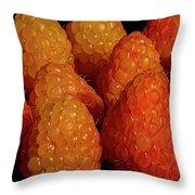 Sunset Raspberries Throw Pillow