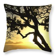 Sunset Revival Throw Pillow