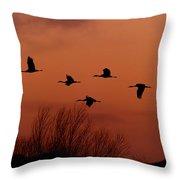 Sunset Sandhill Cranes  Throw Pillow
