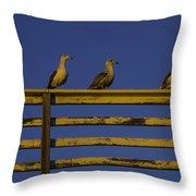 Sunset Seagulls Throw Pillow