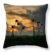 Sunset Silhouettes In June Throw Pillow