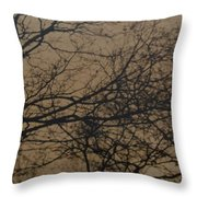 Sunset Snow Throw Pillow
