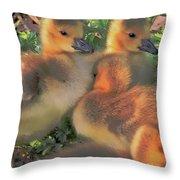 Sunset Snuggle Throw Pillow