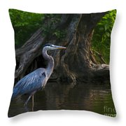 Sunset Stroll By James Figielski Throw Pillow