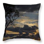 Sunset Study 1 Throw Pillow