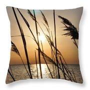 Sunset Through The Dune Grass Throw Pillow