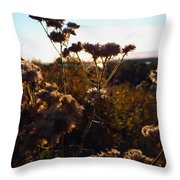 Sunset Through The Flowers Throw Pillow