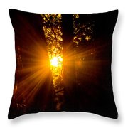 Sun Bursting Through The Trees, Chiloquin Oregon Throw Pillow