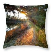Sunset Trails  Throw Pillow