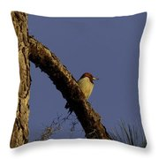 Sunset Tranquility Throw Pillow