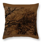 Sunset Winter Throw Pillow