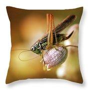 Sunset With A Big Grasshoper Throw Pillow