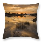 Sunset With Pigeons Throw Pillow