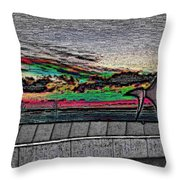 Sunset With The Eagle Throw Pillow