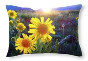 Sunsets And Sunflowers In Buena Vista Throw Pillow