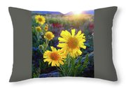 Sunsets And Sunflowers Of Buena Vista 2 Throw Pillow