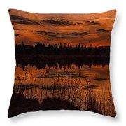 Sunsettia Gloria Catus 1 No. 1 L B. Throw Pillow