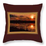Sunsettia Gloria Catus 1 No. 1 L B. With Decorative Ornate Printed Frame. Throw Pillow