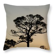 Sunsetting Thru The Trees Throw Pillow