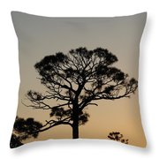 Sunsetting Trees Throw Pillow