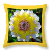 Sunshine Dahlia Throw Pillow by Karen Wiles