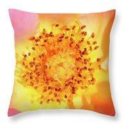 Sunshine - Hybrid Tea Rose - Macro Throw Pillow