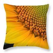 Sunshine In A Flower Throw Pillow