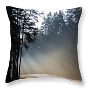 Sunshine In November Throw Pillow