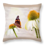 Sunshine On Red Admiral Throw Pillow