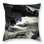 Sunshine On The Fall Throw Pillow