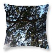 Sunshine Passes Pine  Throw Pillow