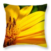 Sunshine Sally Throw Pillow