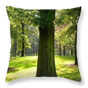 Sunshine Trees Forest Park Throw Pillow