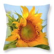Sunshiney Day  Throw Pillow